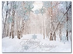 Winter Path - Christmas Cards